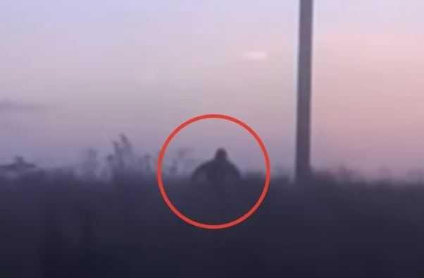 Шурале: странное существо преследует машину в России.