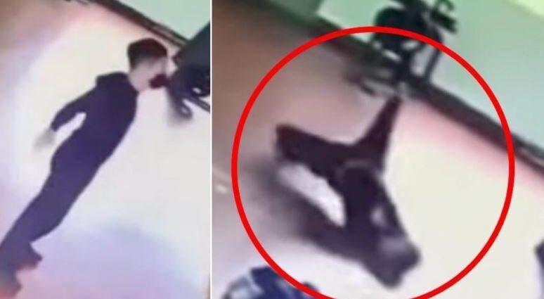 Призрак нападает на мужчину в тренажерном зале.
