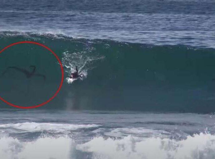 Существо преследует серфера на пляже Сан-Диего.