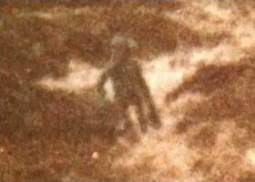 Пришелец Илкли Мур: фотография Филипа Спенсера