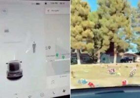 Автопилот Тесла обнаружил привидение на кладбище
